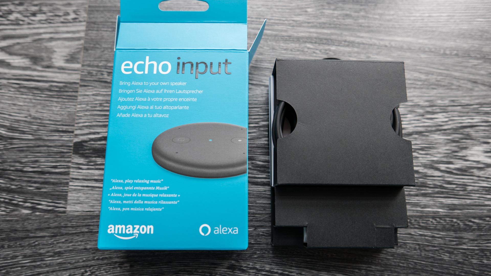 Amazon-Echo-Input-Details-5