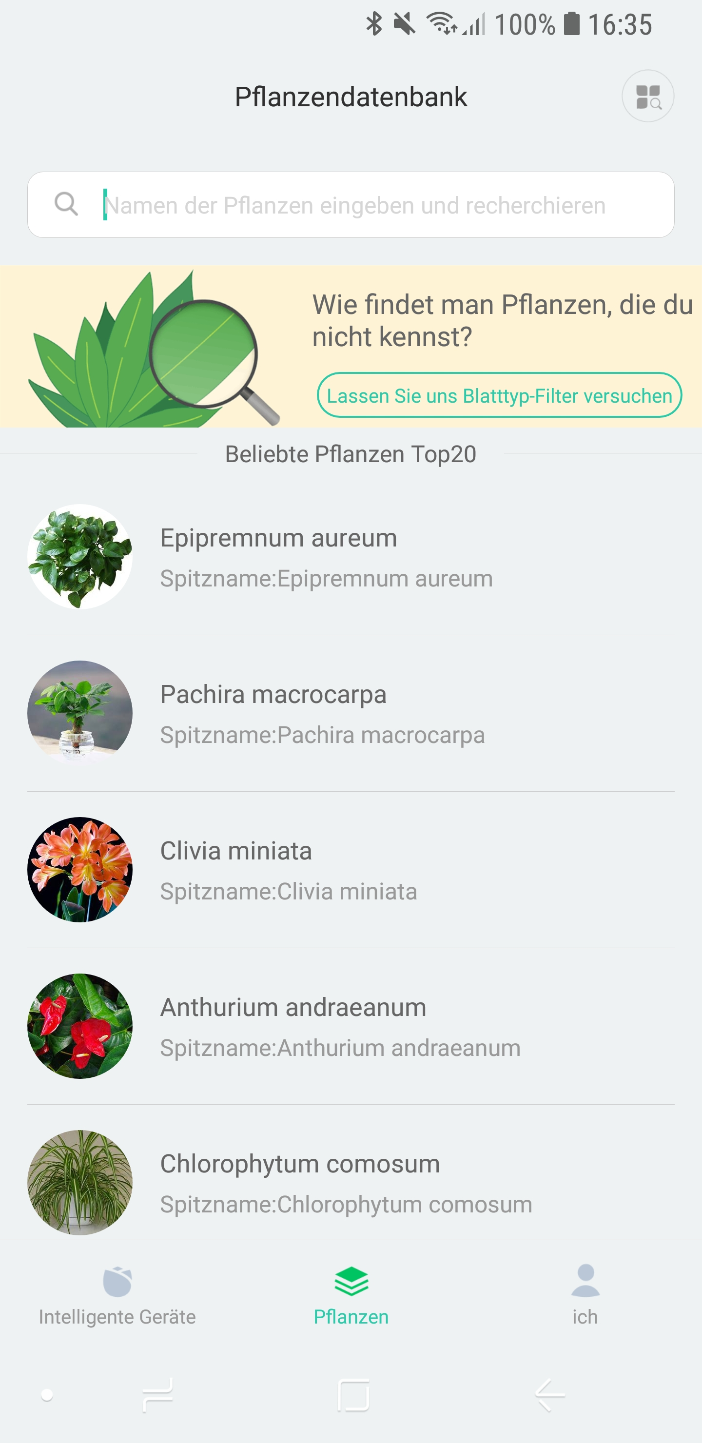 Mi Home Flower Care App 03