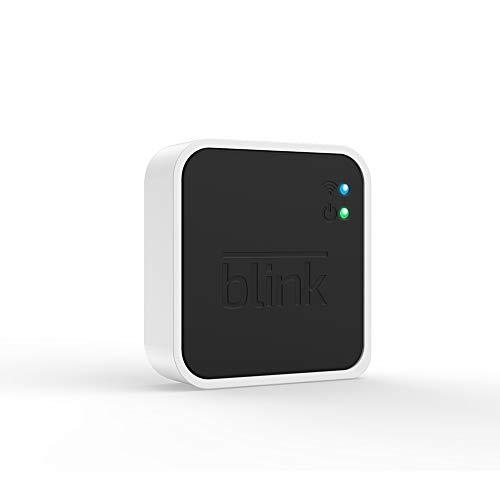 Blink Sync Module 2, Zusatzprodukt