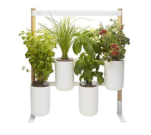 Modulo, Ihr wandelbarer und smarter Indoor-Garten ❃ Bauen Sie das...