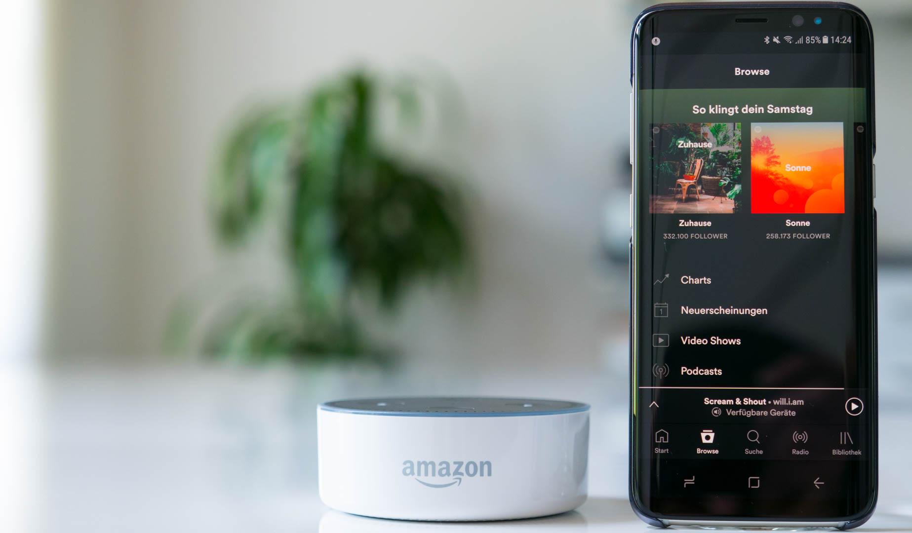 Spotify Free jetzt auch auf den Amazon Echos!