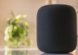 So beliebt sind die einzelnen Smartspeaker von Amazon, Apple und Google