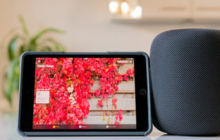 So richtet ihr den Apple HomePod richtig ein und vermeidet Fehler!