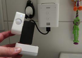 Einen Echo Flex mit beiden Add-ons gleichzeitig verwenden