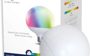 E27 Tint Globeform
