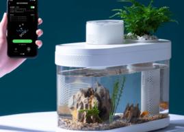 Xiaomi stellt ein smartes Aquarium vor