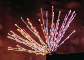 Twinkly Cluster und Twinkly Spritzer – Neue smarte Weihnachtsbeleuchtung
