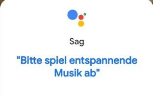 Screenshot Google Assistant