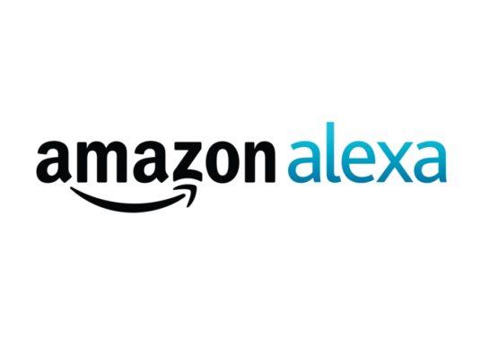Amazon Alexa Skill zur Land- und Bundestagswahl 2021